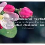 Pflanzenblüte mit dem Thich Nhat Hanh Zitat: Statt zu sagen: Sitz nicht einfach nur da – tu irgendetwas, sollten wir das Gegenteil fordern: Tu nicht einfach irgendetwas – sitz nur da. Thich Nhat Hanh