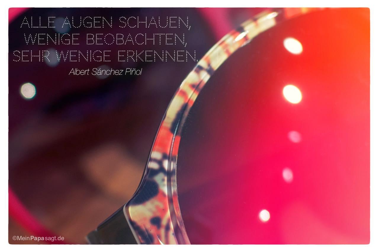 Sonnenbrillen mit dem Albert Sánchez Piñol Zitat: Alle Augen schauen, wenige beobachten, sehr wenige erkennen. Albert Sánchez Piñol