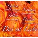Rosen-Blüten mit dem Spruch: Geben ohne zu verlangen Nehmen ohne zu besitzen Teilen ohne zu fragen Halten ohne zu fesseln Das ist Liebe