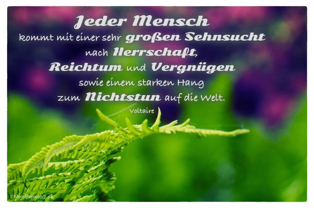 Sehnsucht Zitate Nietzsche | Leben Zitate