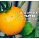 Junge Tomate mit dem Max Frisch Zitat: Die beste Tarnung ist die Wahrheit. Die glaubt einem keiner. Max Frisch