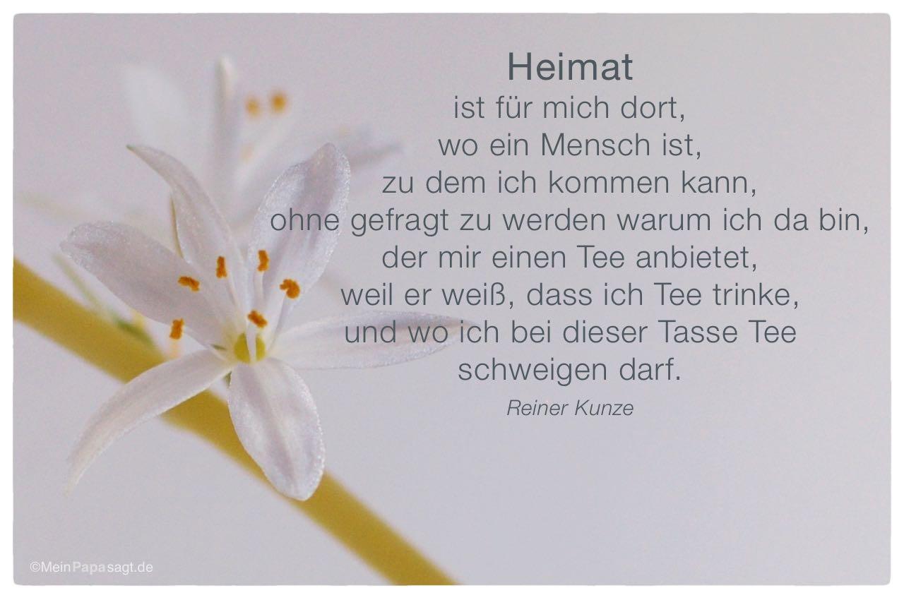 Blüte Mit Dem Reiner Kunze Zitat: Heimat Ist Für Mich Dort, Wo Ein Mensch