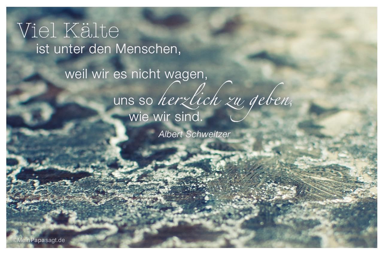 Vereistes Holz mit dem Albert Schweitzer Zitat: Viel Kälte ist unter den Menschen, weil wir es nicht wagen, uns so herzlich zu geben, wie wir sind. Albert Schweitzer