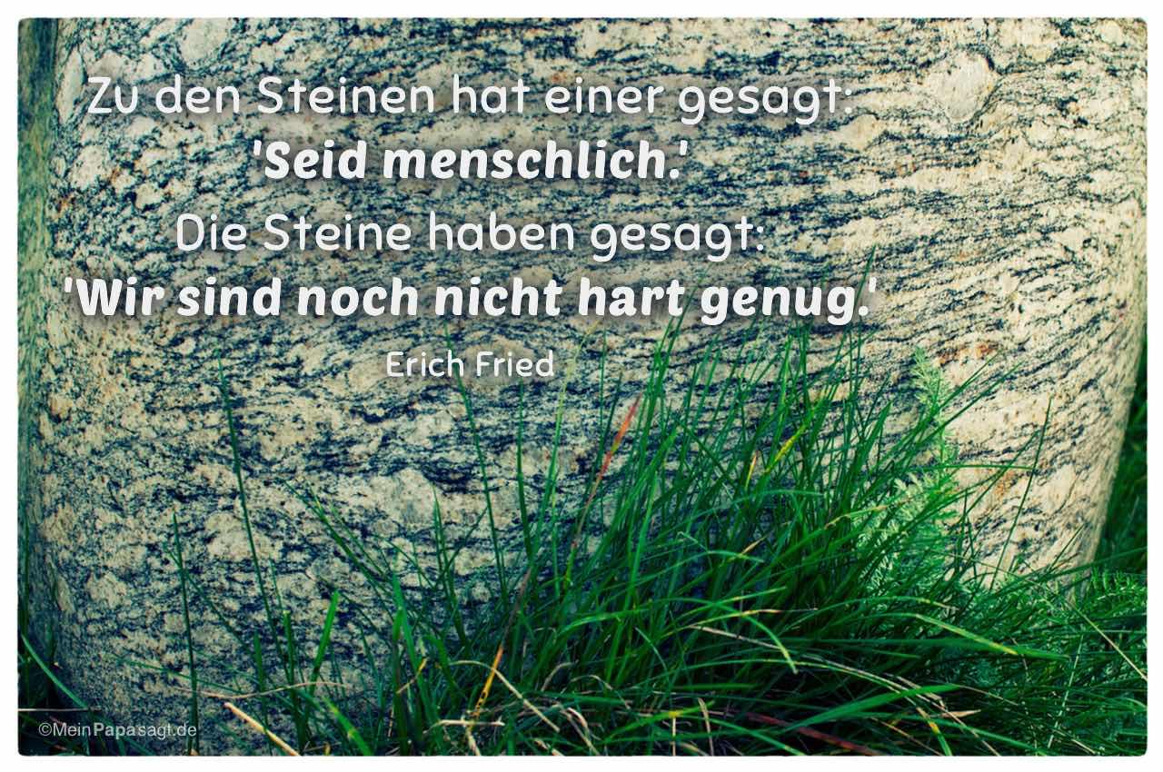 Stein mit dem Erich Fried Zitat: Zu den Steinen hat einer gesagt: 'Seid menschlich.' Die Steine haben gesagt: 'Wir sind noch nicht hart genug.' Erich Fried
