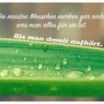Palmenblatt mit Wassertropfen und dem Spruch: Die meisten Menschen merken gar nicht, was man alles für sie tut. Bis man damit aufhört.