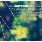 Spinnweben mit dem Thomas Mann Zitat: Die Gewohnheit ist ein Seil. Wir weben jeden Tag einen Faden, und schließlich können wir es nicht mehr zerreißen. Thomas Mann