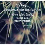 Kaktus mit dem Else Pannek Zitat: Hass - Ohnmacht, die sich selbst verletzt. Wer sich liebt, wehrt sich, bevor er hasst. Else Pannek
