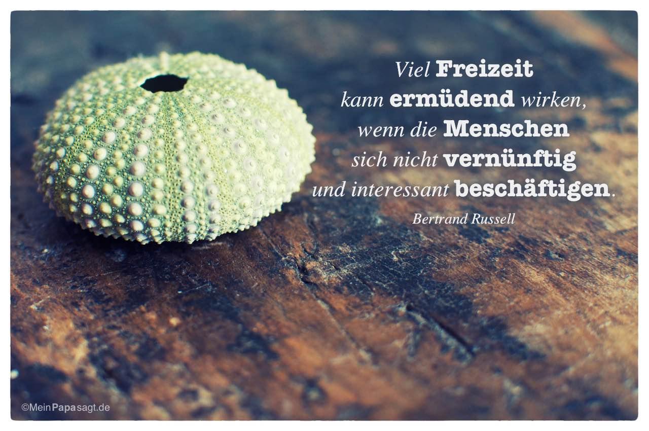 Kalkskelett eines Seeigels mit dem Bertrand Russell Zitat: Viel Freizeit kann ermüdend wirken, wenn die Menschen sich nicht vernünftig und interessant beschäftigen. Bertrand Russell
