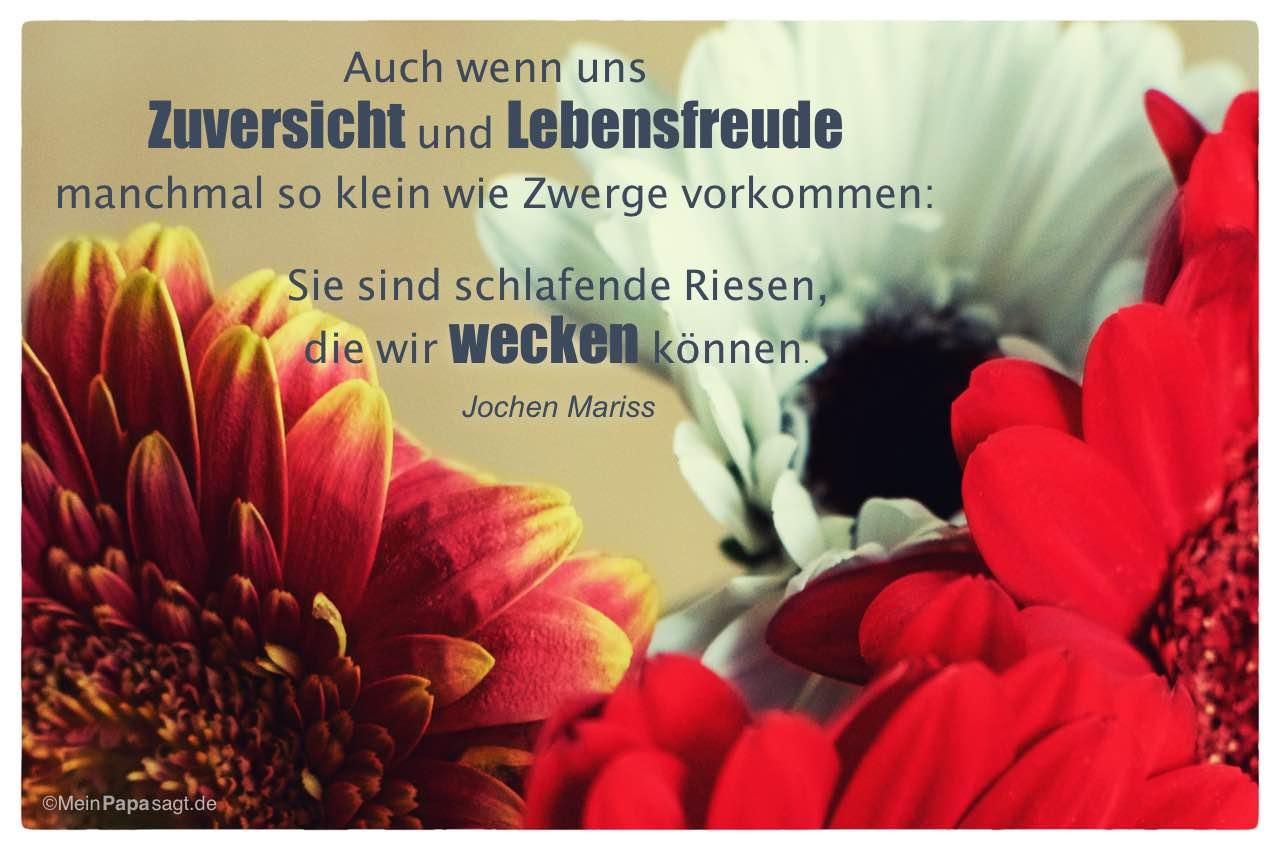 Blütenkelche Mit Dem Jochen Mariss Zitat: Auch Wenn Uns Zuversicht Und  Lebensfreude Manchmal So Klein