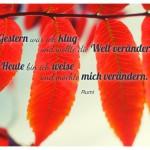 Herbst-Blätter mit dem Rumi Zitat: Gestern war ich klug und wollte die Welt verändern. Heute bin ich weise und möchte mich verändern. Rumi