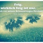Palme - Spiegelung in einer Pfütze mit dem Zitat: Feig, wirklich feig ist nur, wer sich vor seinen Erinnnerungen fürchtet. Elias Canetti