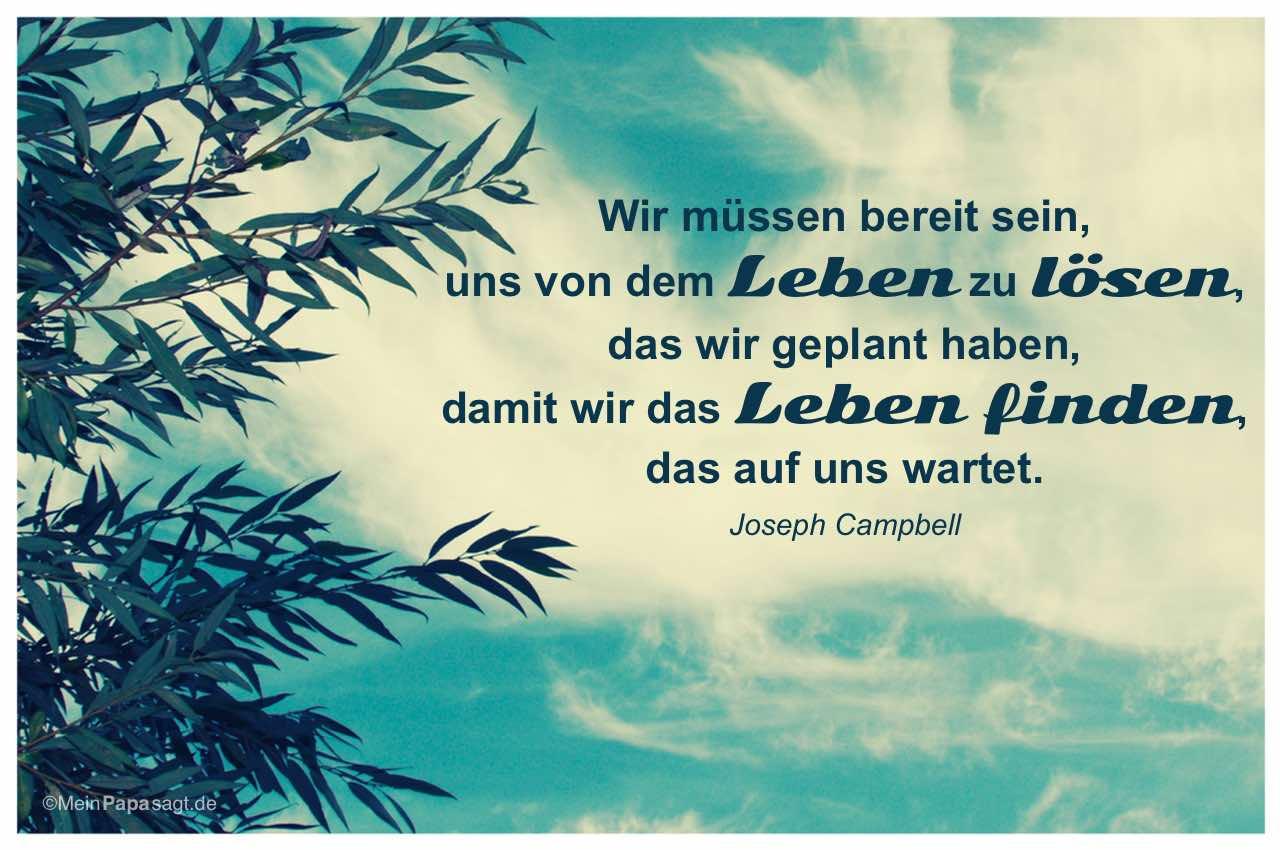 Baum und Himmel mit dem Joseph Campbell Zitat: Wir müssen bereit sein, uns von dem Leben zu lösen, das wir geplant haben, damit wir das Leben finden, das auf uns wartet. Joseph Campbell