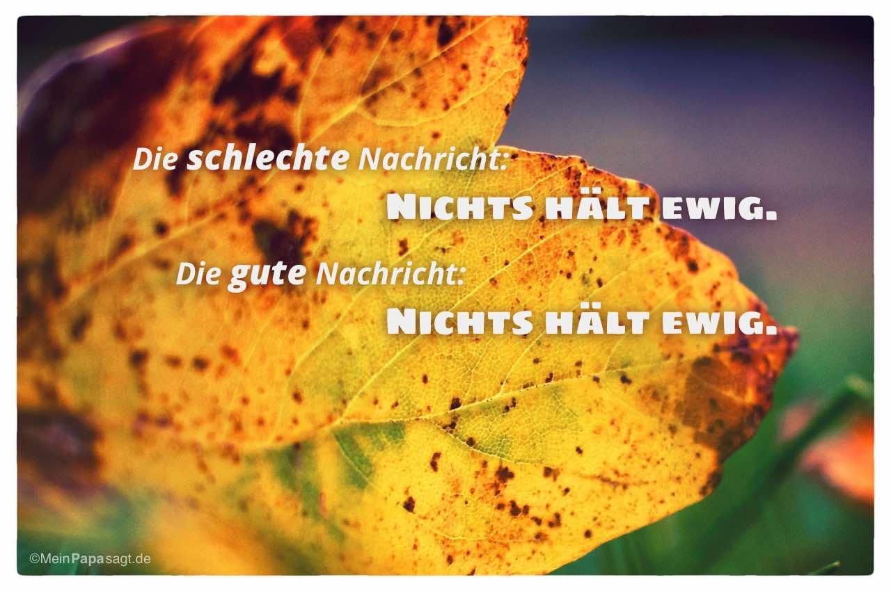 Herbstlaub mit dem Spruch: Die schlechte Nachricht: Nichts hält ewig. Die gute Nachricht: Nichts hält ewig.