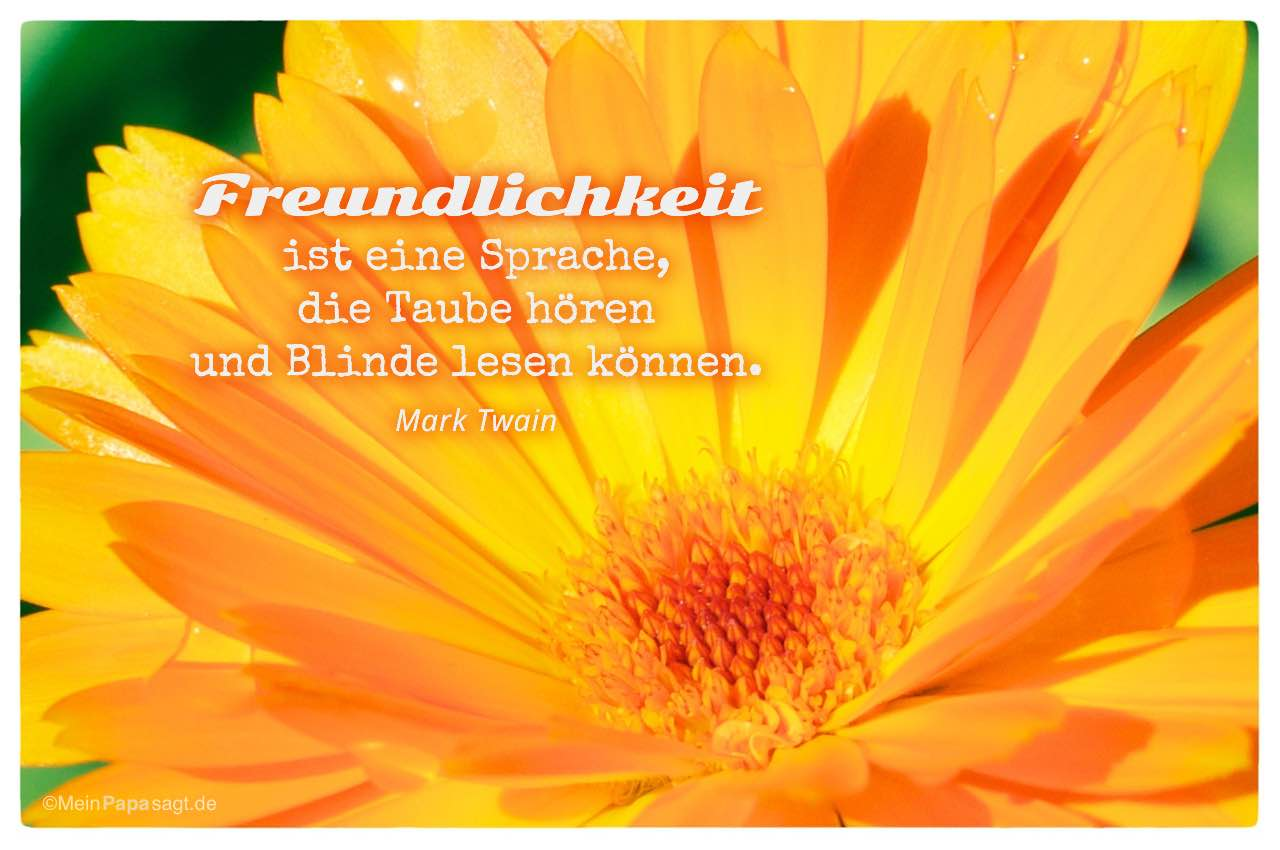 Blütenkelch mit dem Mark Twain Zitat: Freundlichkeit ist eine Sprache, die Taube hören und Blinde lesen können. Mark Twain