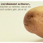 Kartoffelgesicht mit dem Ernst Ferstl Zitat: Es ist verdammt schwer, einen Menschen zu nehmen, wie er ist, wenn er sich anders gibt, als er ist. Ernst Ferstl