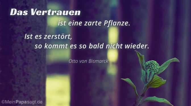 Das Vertrauen ist eine zarte Pflanze…