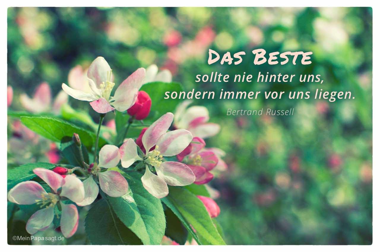 Blütenkelche mit dem Bertrand Russell Zitat: Das Beste sollte nie hinter uns, sondern immer vor uns liegen. Bertrand Russell