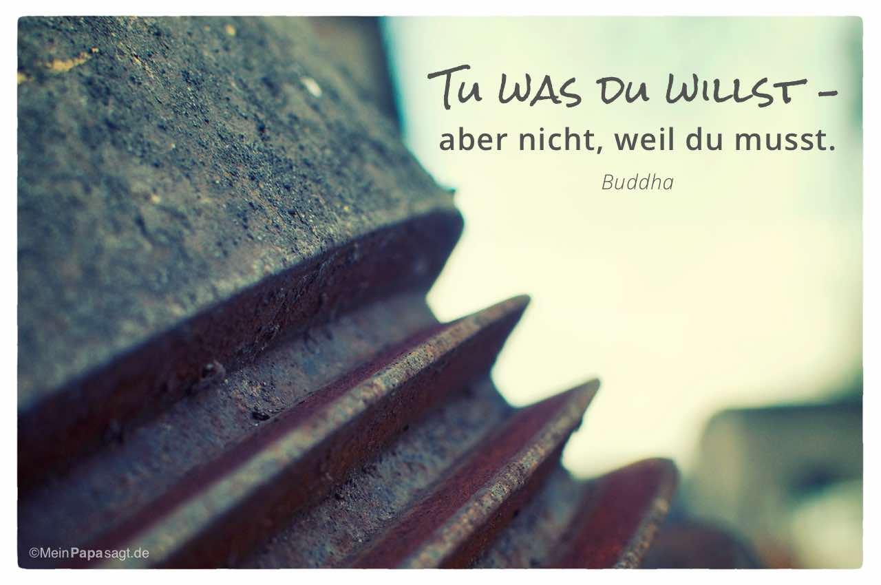 Industrie-Metall-Teil mit dem Buddha Zitat: Tu was du willst – aber nicht, weil du musst. Buddha