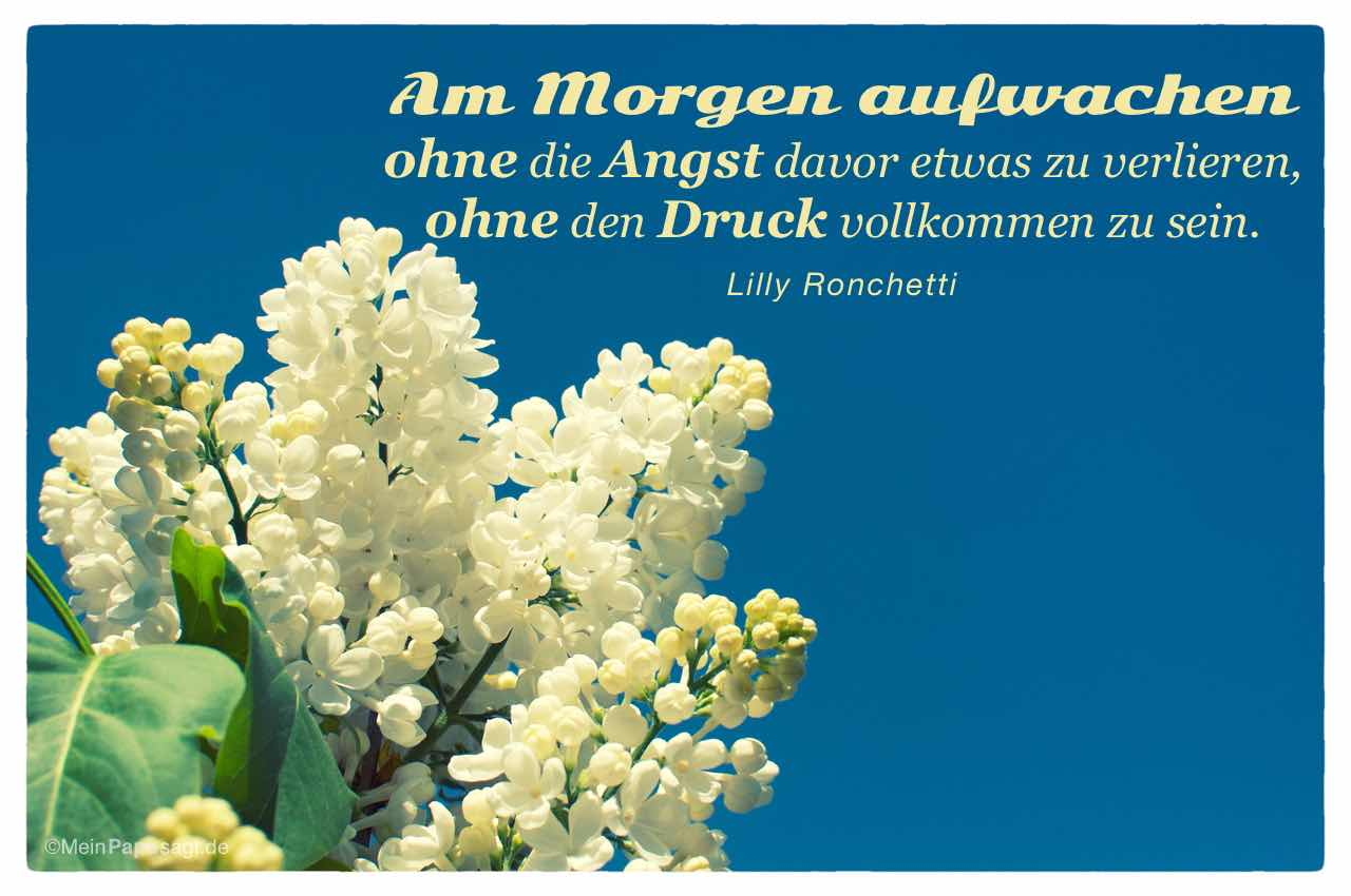 Flieder mit dem Lilly Ronchetti Zitat: Am Morgen aufwachen ohne die Angst davor etwas zu verlieren, ohne den Druck vollkommen zu sein. Lilly Ronchetti