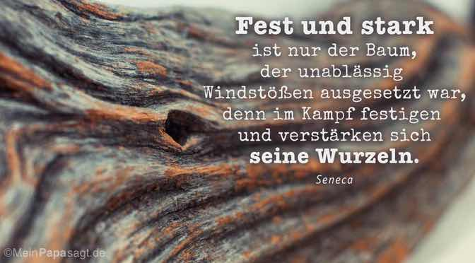 Zitate Liebe Baum
