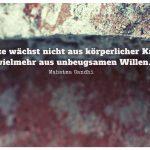 Alte Mauer mit dem Gandhi Zitat: Stärke wächst nicht aus körperlicher Kraft - vielmehr aus unbeugsamen Willen. Mahatma Gandhi