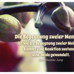 Orchidee mit dem Jung Zitat: Die Begegnung zweier Menschen ist wie die Begegnung zweier Moleküle. Kommt eine Reaktion zustande, sind beide gewandelt. Carl-Gustav Jung
