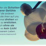 Orchidee mit der altarmenischen Grabinschrift: Wir werfen die Schatten unserer Gefühle auf die anderen und sie die ihren auf uns. Manchmal drohen wir daran zu ersticken. Doch ohne sie gäbe es kein Licht in unserem Leben. Altarmenische Grabinschrift