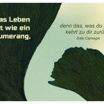 Ginkgo Blatt mit dem Carnegie Zitat: Das Leben ist wie ein Bumerang, denn das, was du gibst, kehrt zu dir zurück! Dale Carnegie