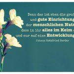 Blüten mit dem Herder Zitat: Denn das ist eben die große und gute Einrichtung der menschlichen Natur, dass in ihr alles im Keim da ist und nur auf eine Entwicklung wartet. Johann Gottfried Herder