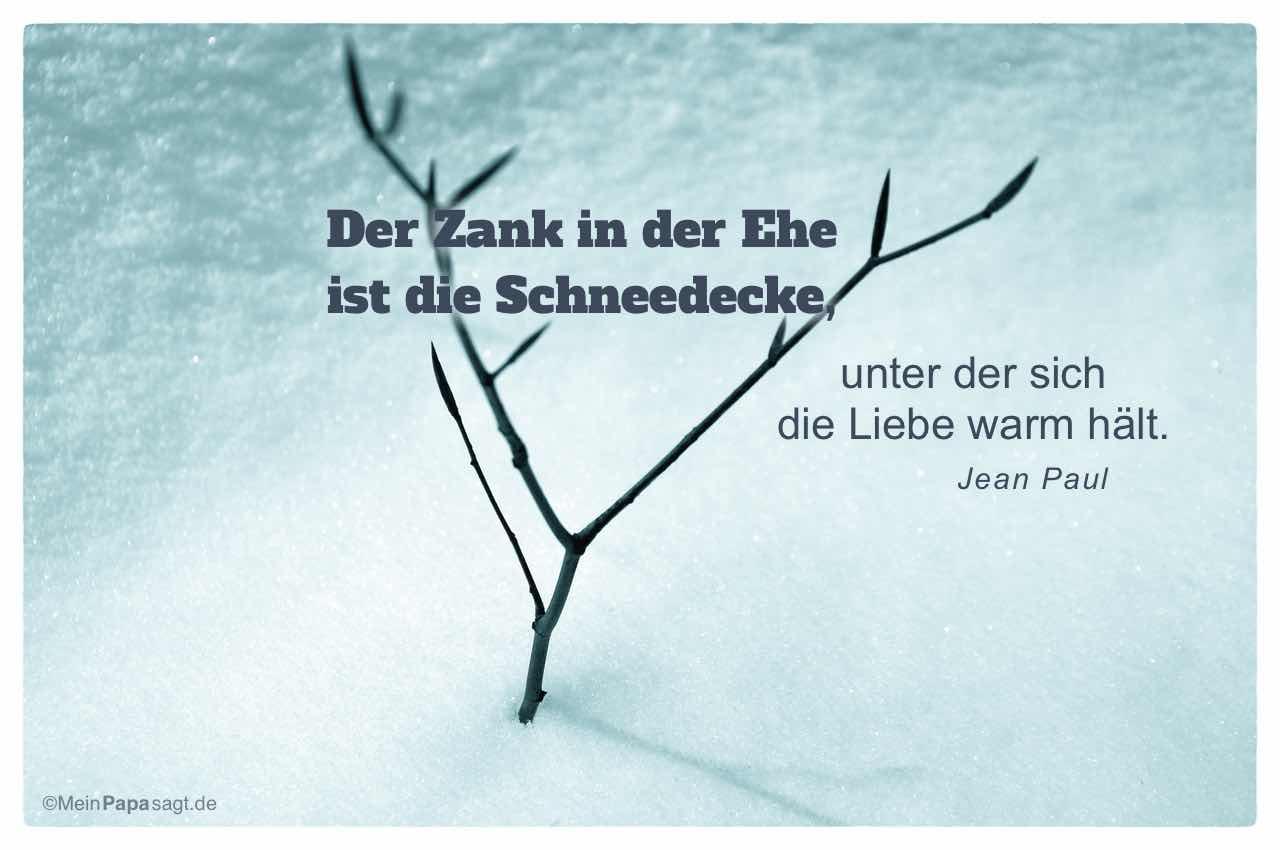 Baumtrieb durch Schneedecke mit dem Jean Paul Zitat: Der Zank in der Ehe ist die Schneedecke, unter der sich die Liebe warm hält. Jean Paul