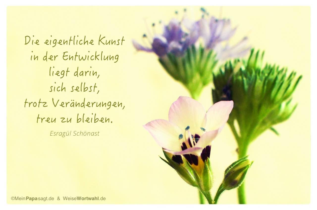 Blüten mit dem Schönast Zitat: Die eigentliche Kunst in der Entwicklung liegt darin, sich selbst, trotz Veränderungen, treu zu bleiben. Esragül Schönast