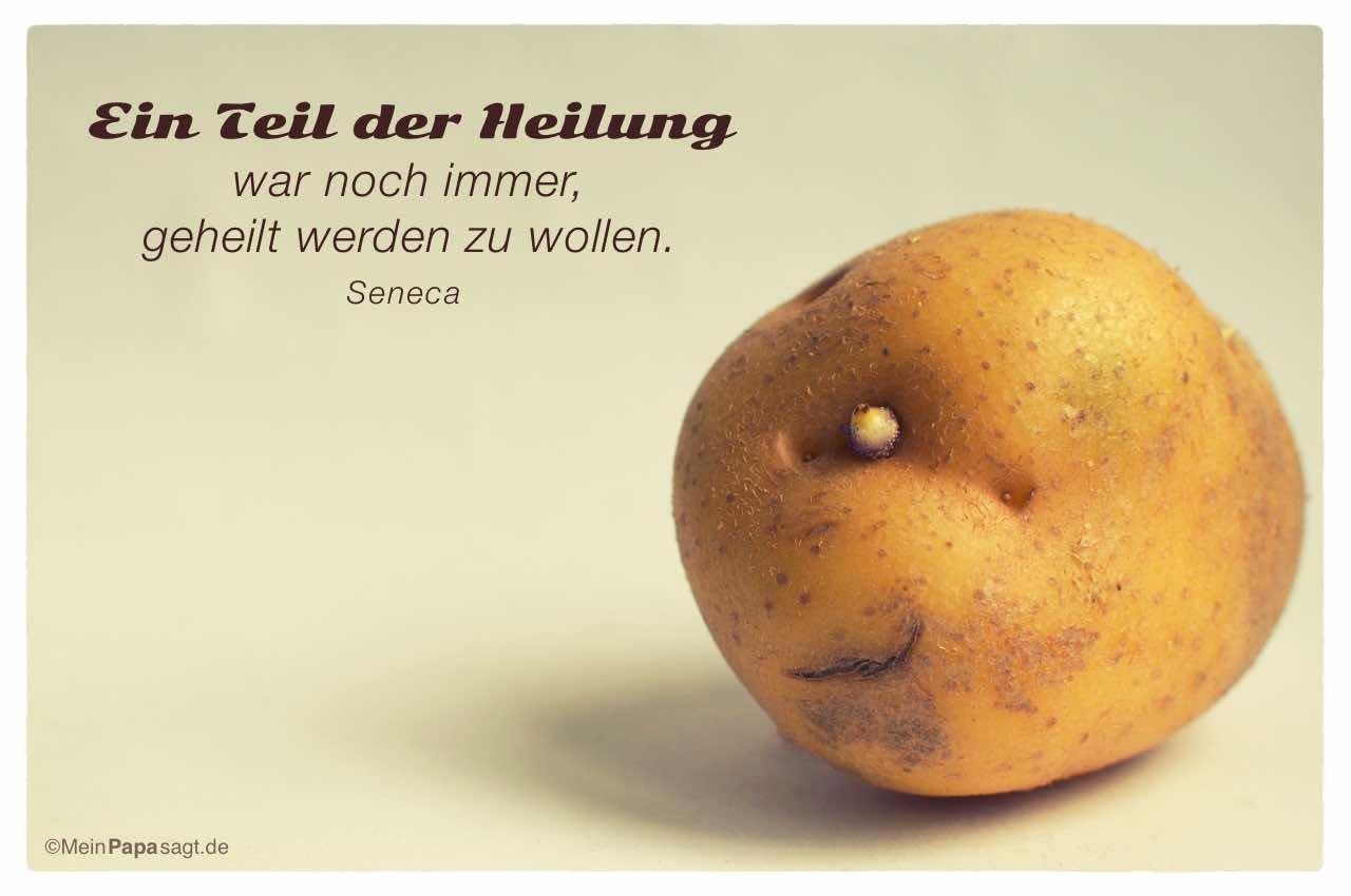 Kartoffelgesicht mit dem Seneca Zitat: Ein Teil der Heilung war noch immer, geheilt werden zu wollen. Seneca