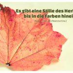 Herbst-Laub mit dem von Hofmannsthal Zitat: Es gibt eine Stille des Herbstes bis in die Farben hinein. Hugo von Hofmannsthal