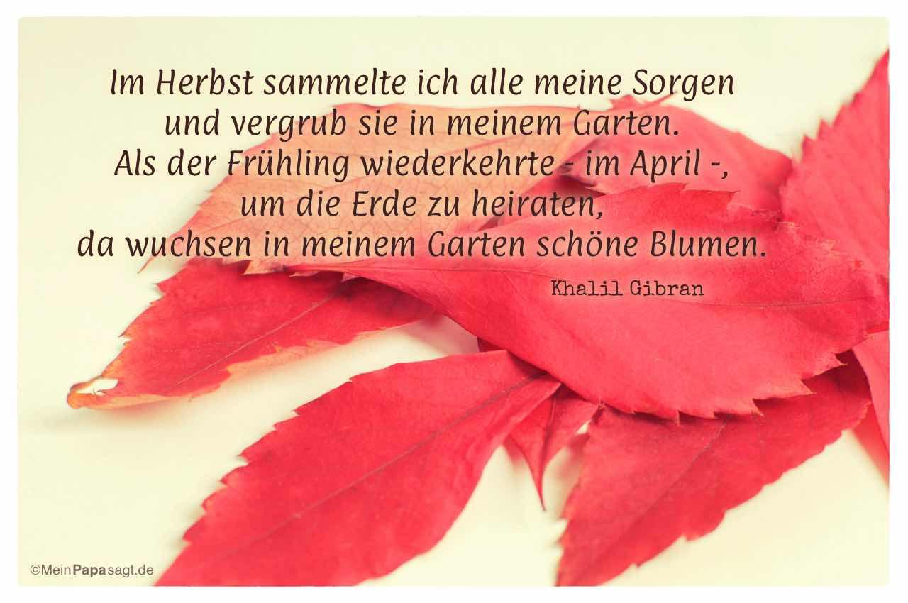 Herbst-Laub mit dem Gibran Zitat: Im Herbst sammelte ich alle meine Sorgen und vergrub sie in meinem Garten. Als der Frühling wiederkehrte - im April -, um die Erde zu heiraten, da wuchsen in meinem Garten schöne Blumen. Khalil Gibran
