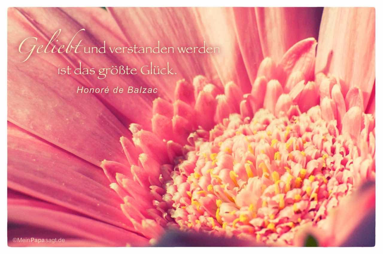Gerbera mit dem Balzac Zitat: Geliebt und verstanden werden ist das größte Glück. Honoré de Balzac