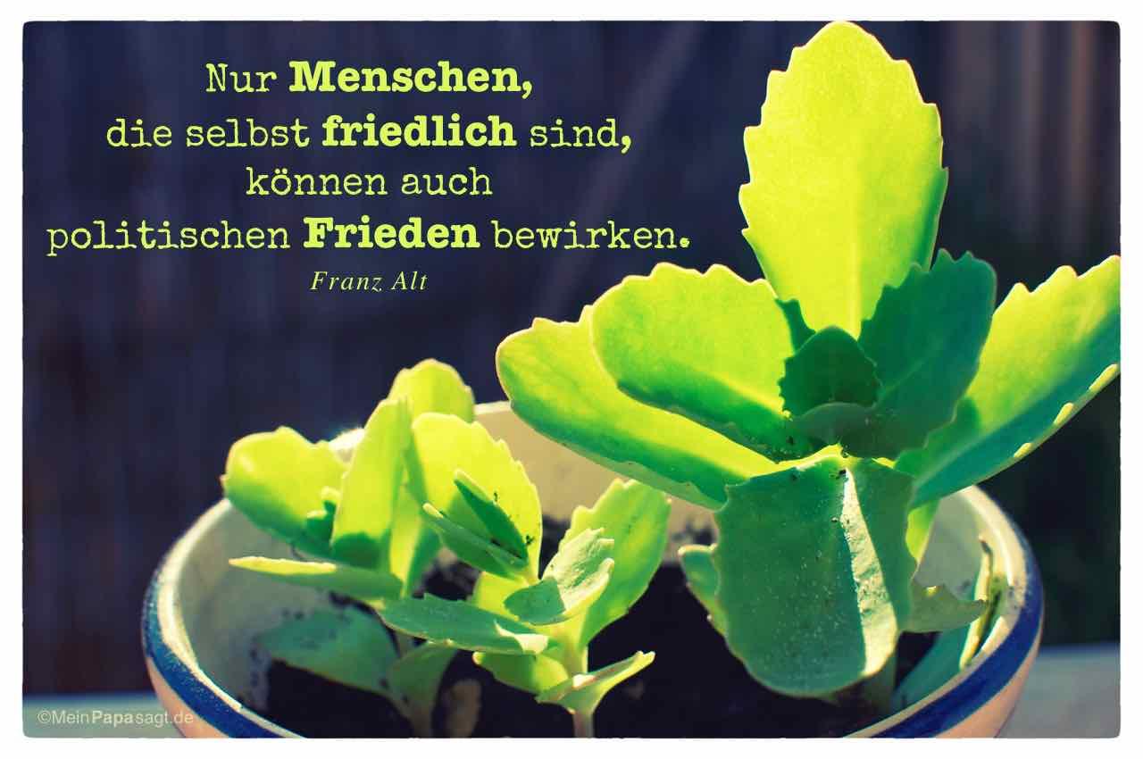 Fette Henne mit dem Alt Zitat: Nur Menschen, die selbst friedlich sind, können auch politischen Frieden bewirken. Franz Alt