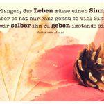 Herbstlaub mit Tannenzapfen um dem Hesse Zitat: Wir verlangen, das Leben müsse einen Sinn haben - aber es hat nur ganz genau so viel Sinn, als wir selber ihm zu geben imstande sind. Hermann Hesse