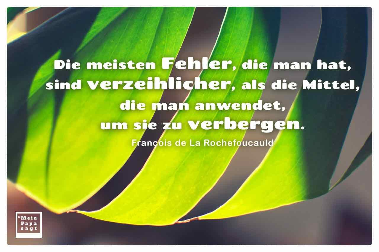 Pflanze - Fensterblätter mit dem Rochefoucauld Zitat: Die meisten Fehler, die man hat, sind verzeihlicher, als die Mittel, die man anwendet, um sie zu verbergen. François de La Rochefoucauld