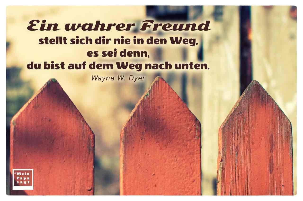 Holz Gartenzaun mit dem Dyer Zitat: Ein wahrer Freund stellt sich dir nie in den Weg, es sei denn, du bist auf dem Weg nach unten. Wayne W. Dyer