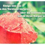 Mohn Blume mit dem Wilber Zitat: Einige von uns haben den Verstand verloren, aber die meisten von uns haben ihren Körper verloren. Ken Wilber