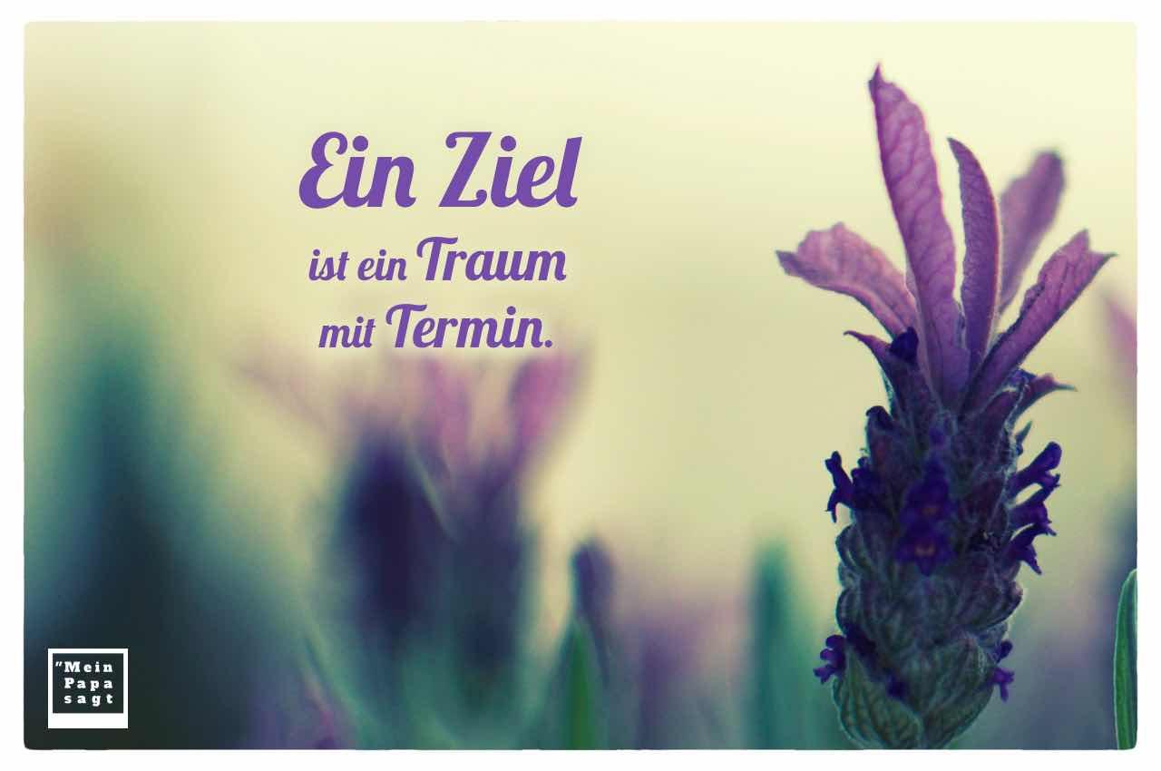 Lavendel mit dem Spruch: Ein Ziel ist ein Traum mit Termin.