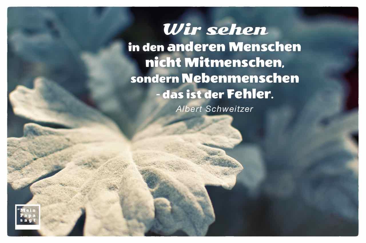Silberblatt mit dem Schweitzer Zitat: Wir sehen in den anderen Menschen nicht Mitmenschen, sondern Nebenmenschen - das ist der Fehler. Albert Schweitzer