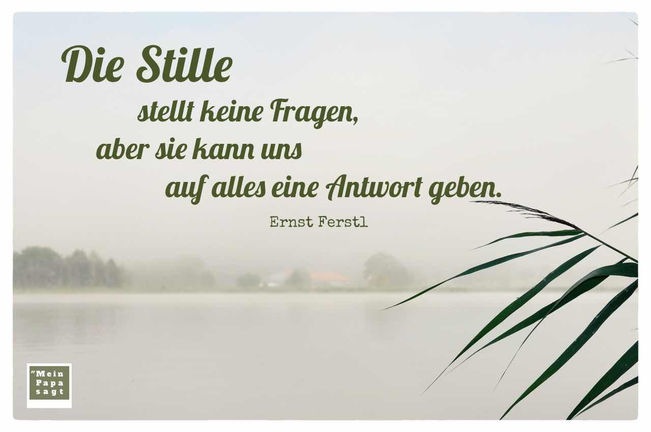 Havel im Morgennebel mit dem Ferstl Zitat: Die Stille stellt keine Fragen, aber sie kann uns auf alles eine Antwort geben. Ernst Ferstl