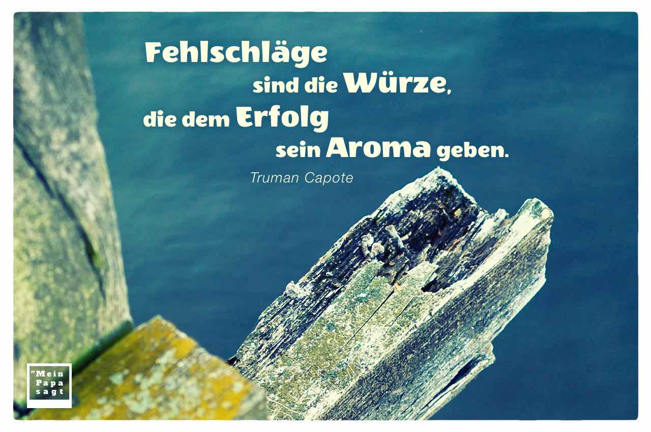 Steg an der Havel mit dem Capote Zitat: Fehlschläge sind die Würze, die dem Erfolg sein Aroma geben. Truman Capote