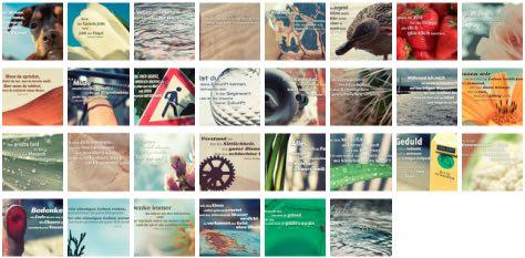 Übersichtsbild. Bilder Galerie mit Lebensweisheiten, Weisheiten, Zitate, Sprichwörter und Sprüche des Tages Juni 2017