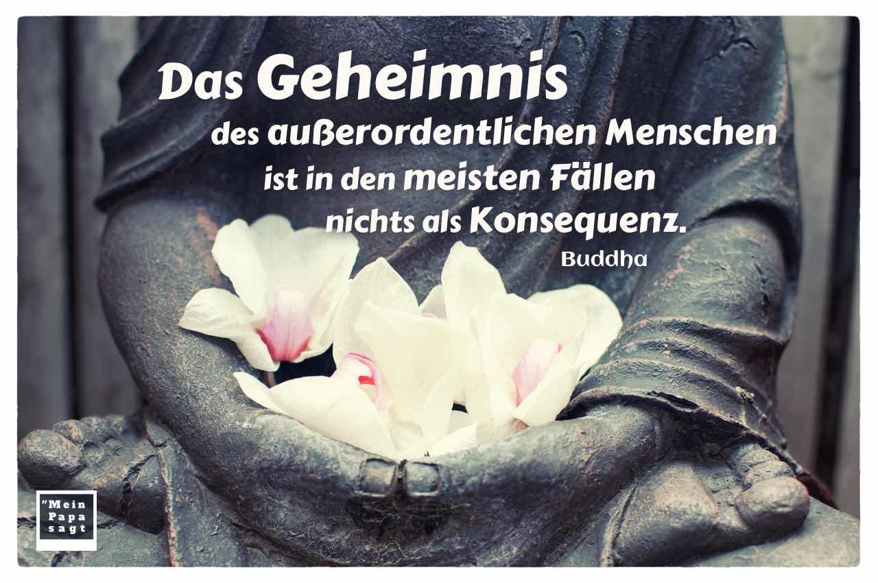 Buddha Statue mit Orchideen und dem Buddha Zitat: Das Geheimnis des außerordentlichen Menschen ist in den meisten Fällen nichts als Konsequenz. Buddha