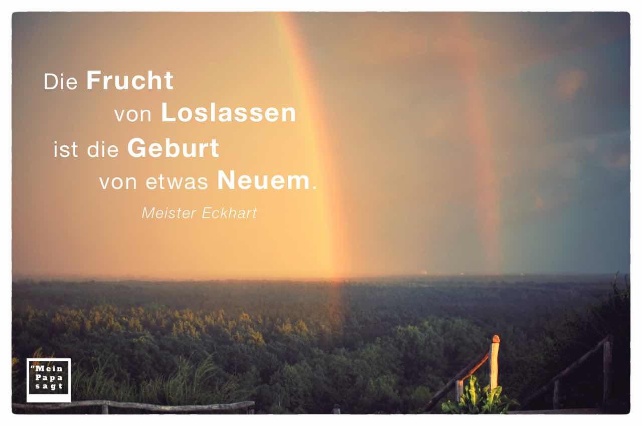 Doppelter Regenbogen über dem Berliner Grunewald mit dem Meister Eckhart Zitat: Die Frucht von Loslassen ist die Geburt von etwas Neuem. Meister Eckhart