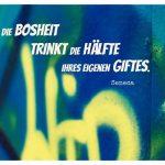 Graffiti mit dem Seneca Zitat: Die Bosheit trinkt die Hälfte ihres eigenen Giftes. Seneca