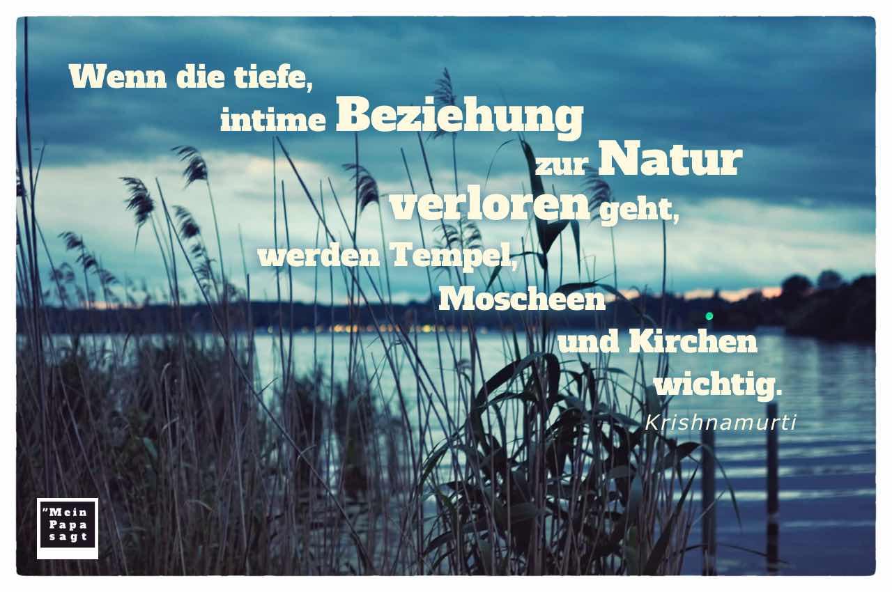 Havel Berlin mit dem Krishnamurti Zitat: Wenn die tiefe, intime Beziehung zur Natur verloren geht, werden Tempel, Moscheen und Kirchen wichtig. Krishnamurti