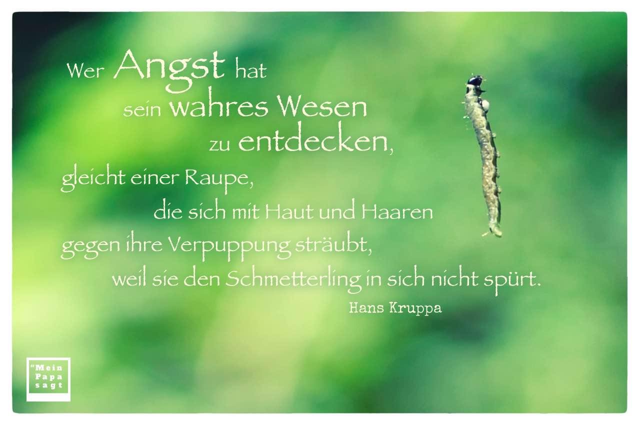 Raupe mit dem Kruppa Zitat: Wer Angst hat sein wahres Wesen zu entdecken, gleicht einer Raupe, die sich mit Haut und Haaren gegen ihre Verpuppung sträubt, weil sie den Schmetterling in sich nicht spürt. Hans Kruppa